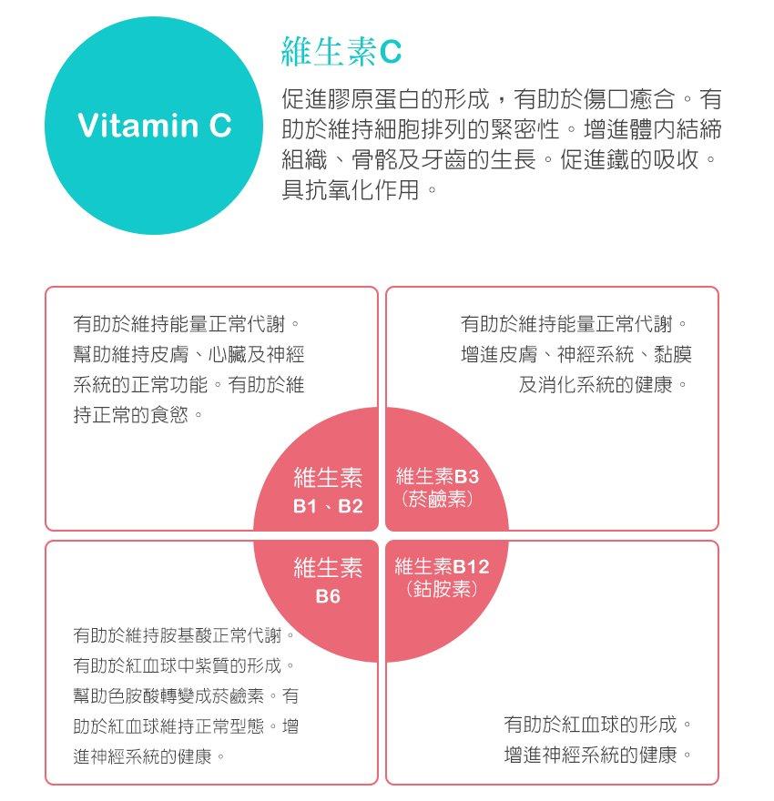 維生素C,維生素B群,抗氧化,食欲,正常代謝,健康